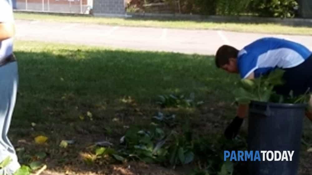 cittadini uniti per la pulizia di parchi e strade di colorno-5