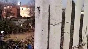 ennesimo atto vandalico alla stazione di colorno (vetri rotti e urina ovunque)-3