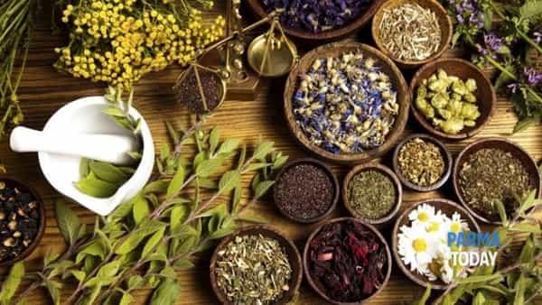 Salute & Benessere: da domenica a La Caplèra con le erbe aromatiche e officinali