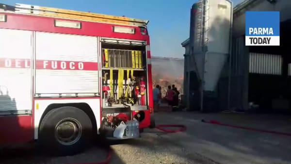 VIDEO - Grosso incendio in un'azienda agricola a Busseto