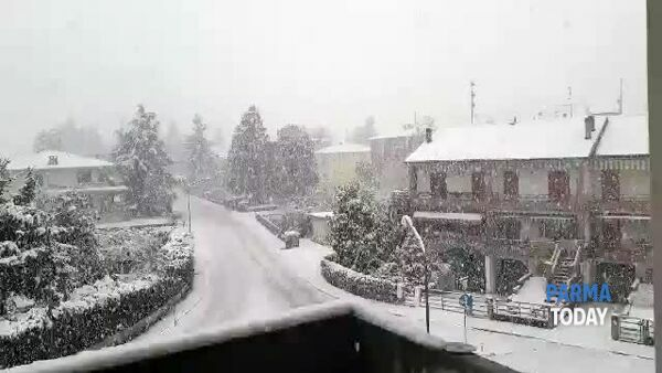 VIDEO | Neve a Noceto