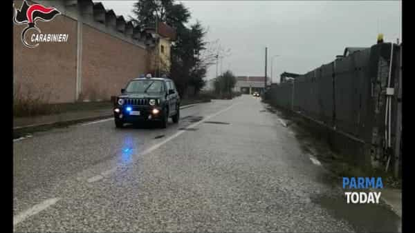 VIDEO | 'Ndrangheta, operazione Grimilde: sequestro di un'azienda di trasporti di Parma