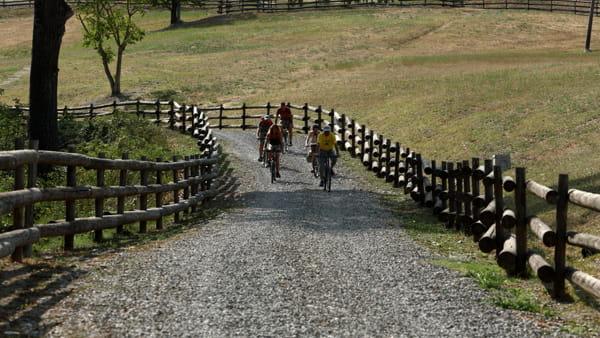 """""""Rivalta Bike"""": con le due ruote alla scoperta della biodiversità"""