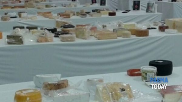cooperativa casearia agrinascente vince due medaglie al world cheese award 2014-4