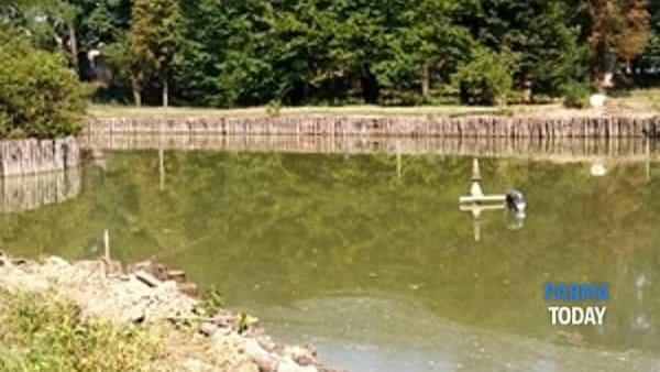 riapertura dell'area romantica del parco storico della reggia-3